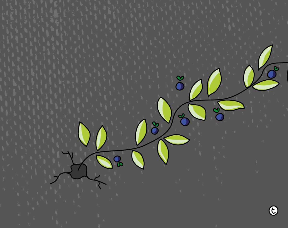 Illustration of a plant growing out of a crack in dark concrete
